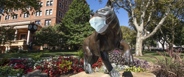 Pitt Panther wearing medical mask